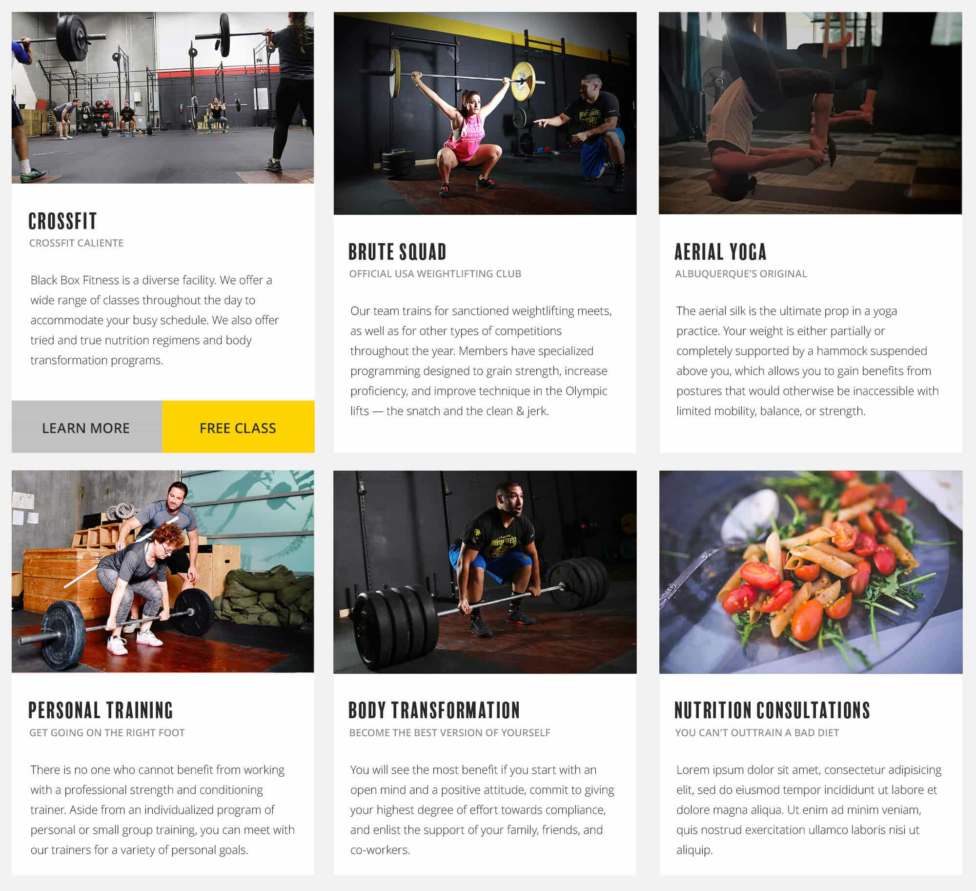 Black Box Fitness Programs